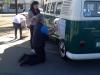Vehicle marketing, advertising + client branding (NSW)