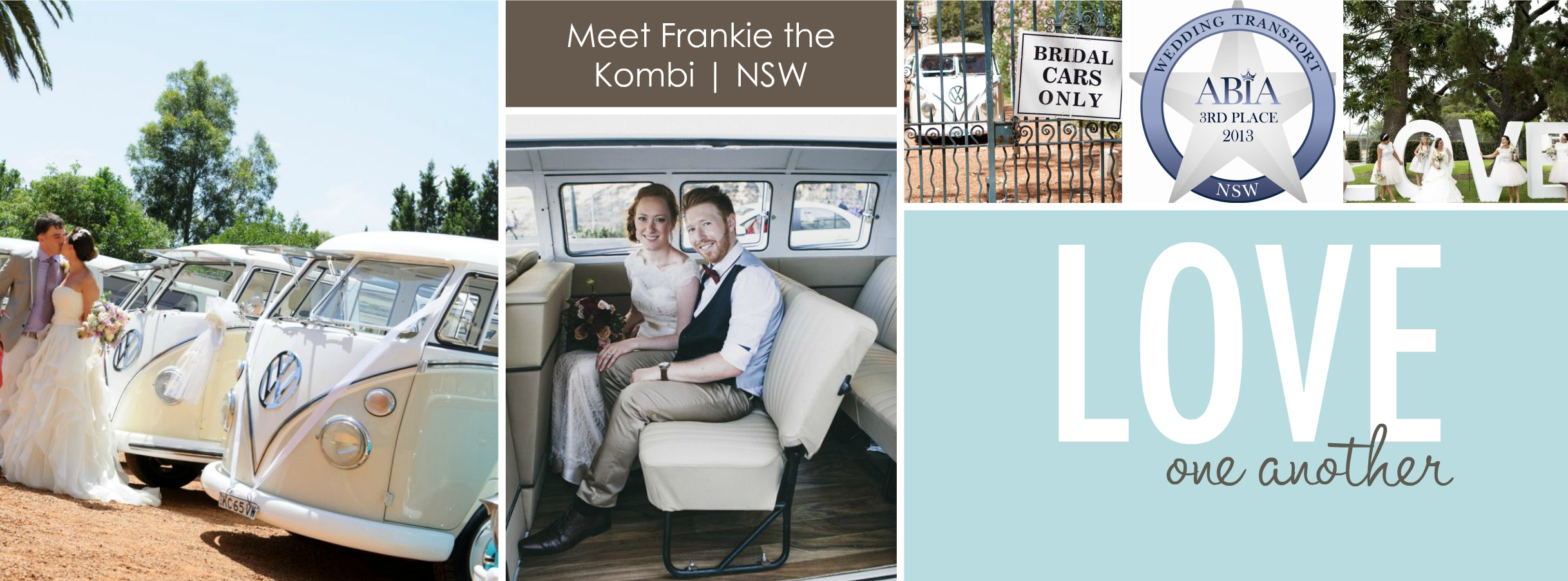 frankie-the-kombi